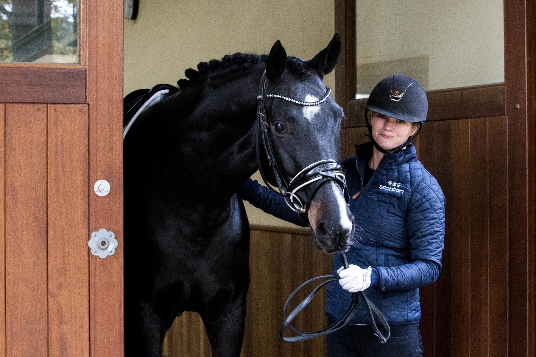 Stübben, Stuebben, Saddle, Gläserne Manufaktur, Emily Harris, Saddle fitting, Tom Sexton